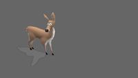 Deer | Bored | 2