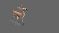 Deer | Jog | 1