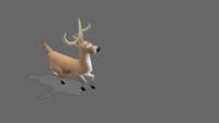 Deer | Jog | 2