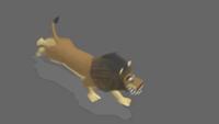 Lion | Jog | 2